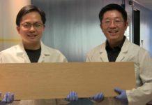 Il super legno più forte dell'acciaio